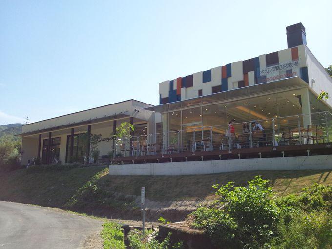 山郷にあるマイナスイオンたっぷりのカフェ「cocogarden」。