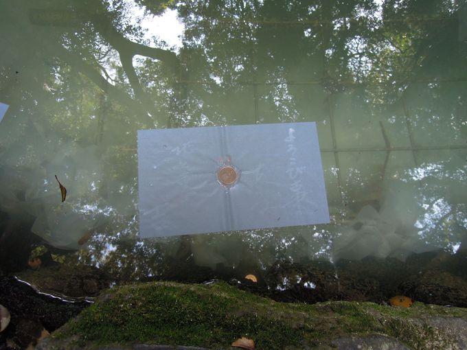 八重垣神社に来たら忘れてはいけない「鏡の池占い」