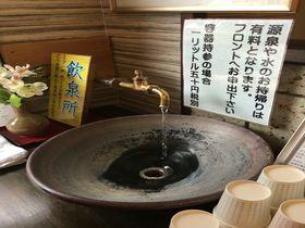 源泉かけ流しの客室露天風呂を堪能!西那須温泉「五ツ星源泉の宿大鷹の湯」|栃木県|トラベルjp<たびねす>