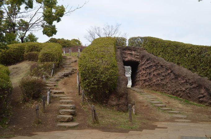 開放的な空間の大森貝塚遺跡庭園