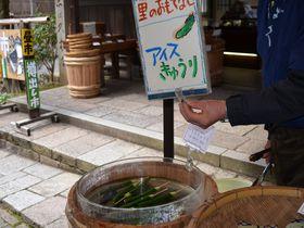 どこか懐かしい日本の里山 京都・大原「音無の滝」で心身ともに癒される!|京都府|トラベルjp<たびねす>