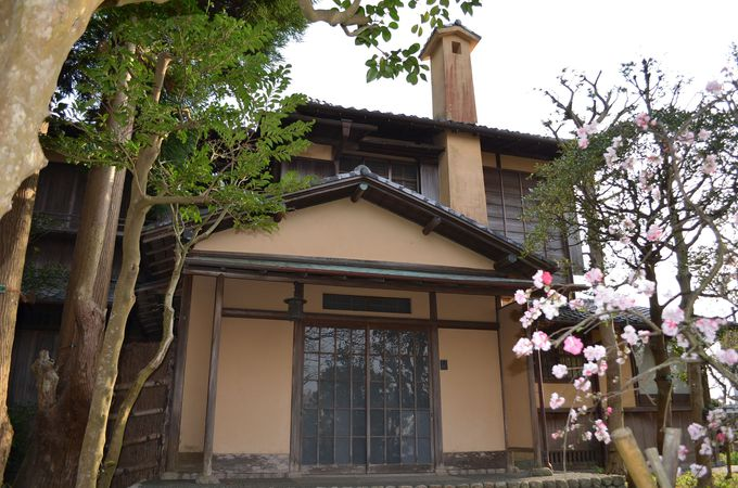 歴史を感じさせる「旧脇村邸」