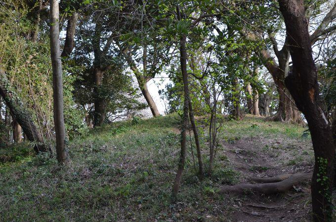 林道の中の「前方後円墳」