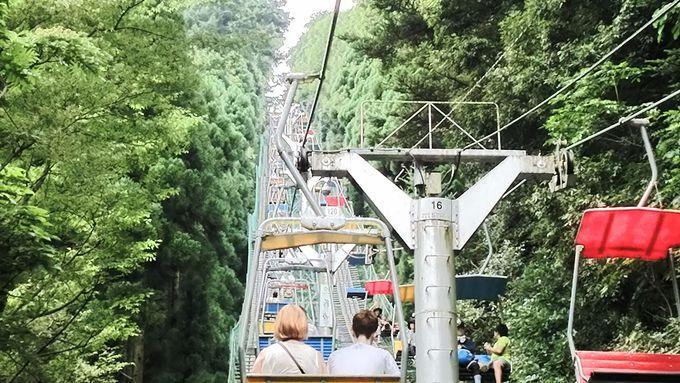 ミシュランガイドにも掲載!世界一登山客が多い山「高尾山」