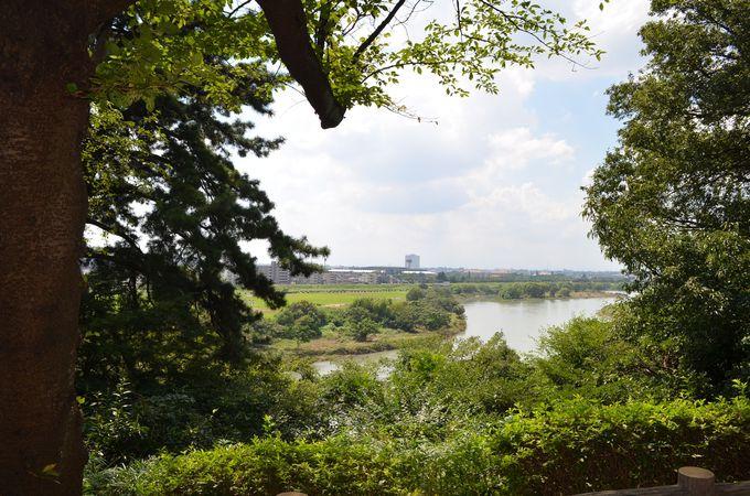 「多摩川台公園」で四季を楽しむ