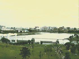 東京大森「海苔のふるさと館」海苔養殖発祥の地を歩く|東京都|トラベルjp<たびねす>