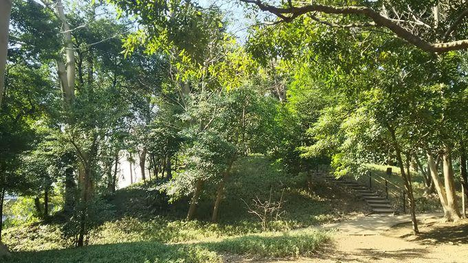 品川駅から徒歩5分!「高輪森の公園」で森林浴