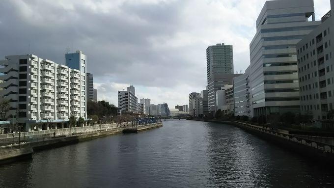 「高浜運河沿緑地」で水辺を散策