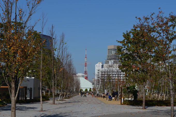 「芝浦中央公園」の広々とした芝生公園から東京タワーを眺める