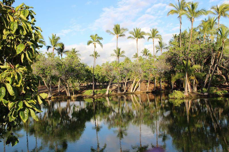 洞窟の闇に浮かび上がる精霊!?ハワイ島の「マウナラニ」ってどんなところ?