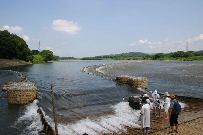 那珂川の風物詩「鮎簗(やな)漁」とは