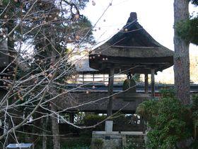 茅葺屋根の禅寺!栃木県「大雄寺」で禅の心を学ぶ|栃木県|トラベルjp<たびねす>