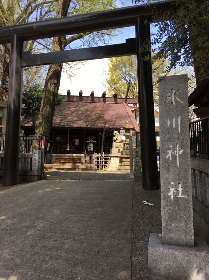 大宮の本社から遷座された由緒正しき神社