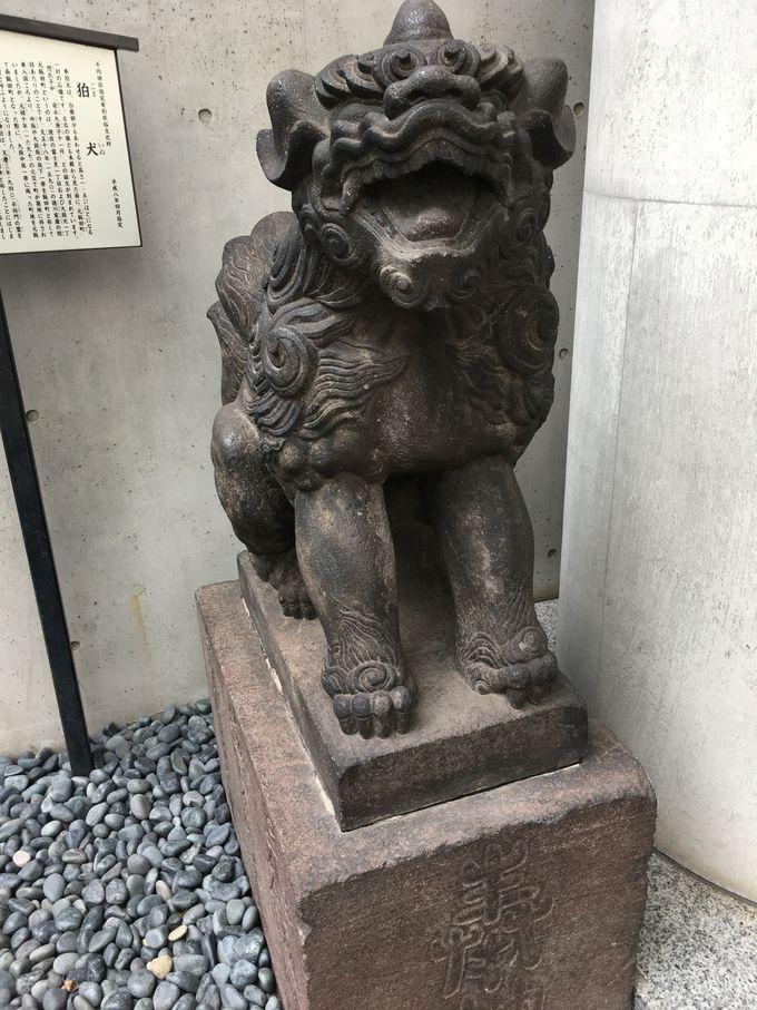 約230年の歴史をもつ千代田区最古の狛犬!