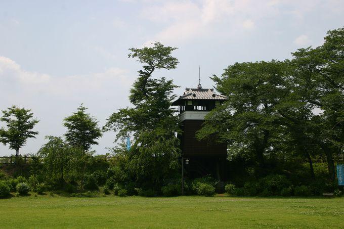 県外からも観光客が来るアジサイの名所!黒羽城跡