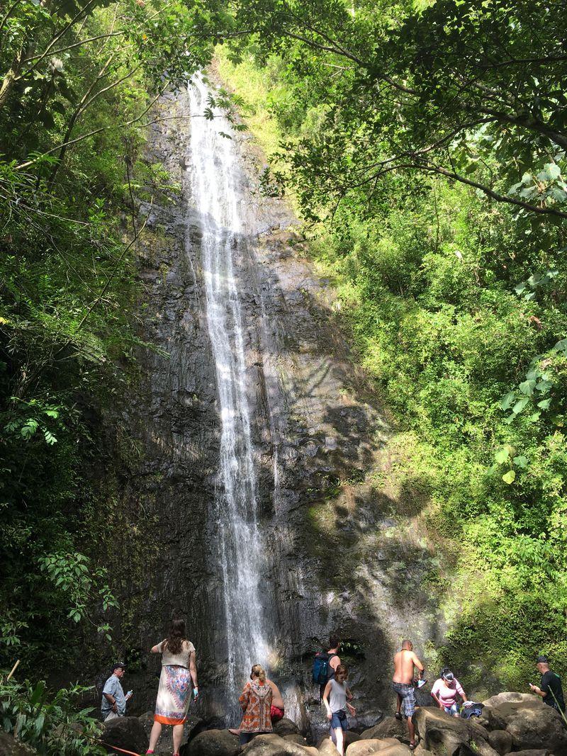 2ドル50セントで行けるポリネシアのパワースポット!ホノルル「マノア渓谷」で森林浴