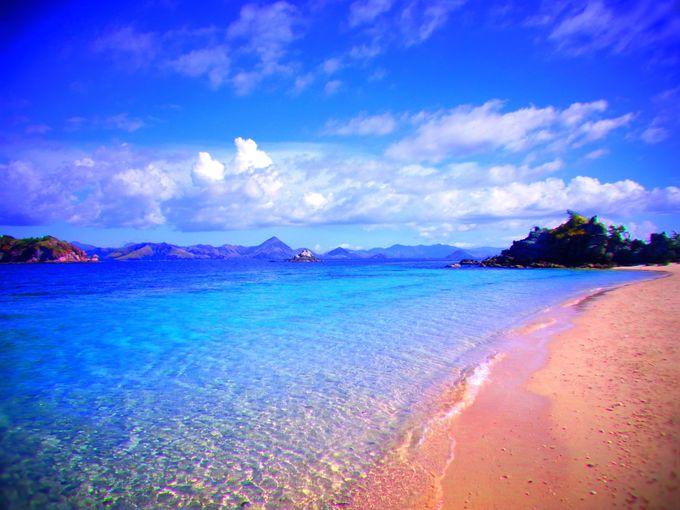 この世の楽園「ピンクビーチ」