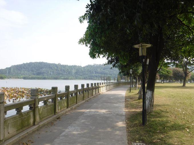 池の散歩コースを満喫しよう!