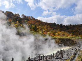 秋田・美しの紅葉と効能溢れる癒しの湯治宿「玉川温泉」|秋田県|トラベルjp<たびねす>
