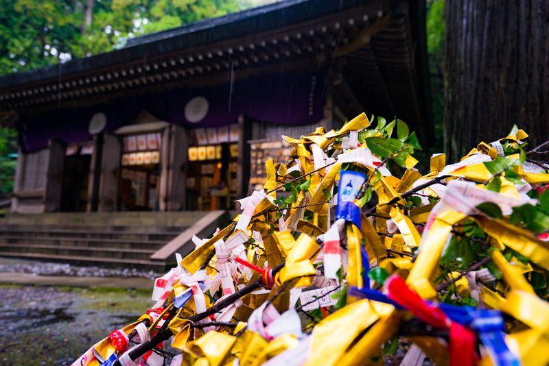 一ノ宮めぐりの難所!?新潟県・佐渡一ノ宮「度津神社」で金色のおみくじを引こう