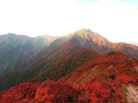 谷川岳ロープウェイとリフトで紅葉&雲海!「天神峠」までのお手軽空中散歩|群馬県|トラベルjp<たびねす>