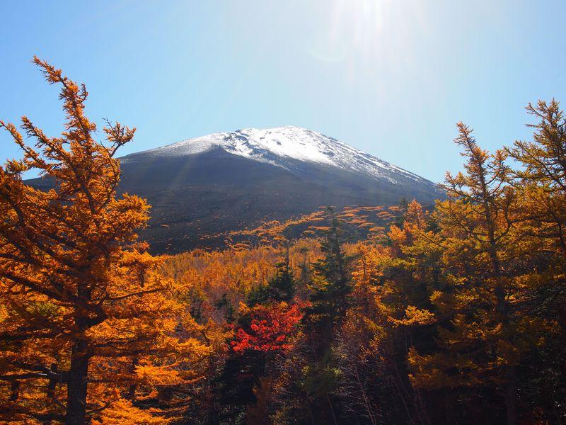 晴れたら爽快、ガスっても神秘的!おいしい富士山五合目の秋