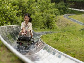 幻の花やボブスレー!新潟「湯沢高原 パノラマパーク」で高原を遊び尽くそう|新潟県|トラベルjp<たびねす>