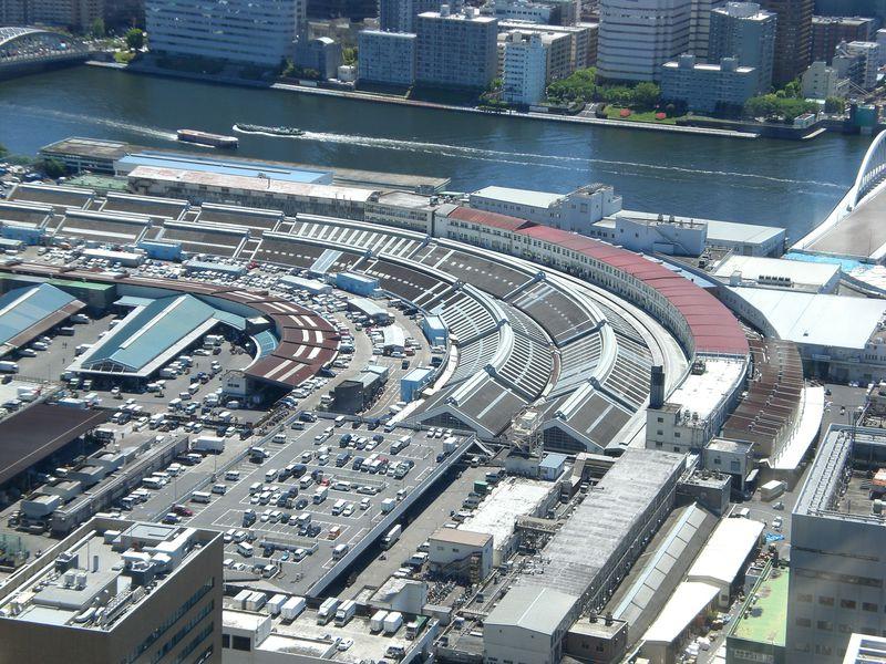 まだまだ楽しめる東京「築地場内市場」、その巡り方と美味しさを堪能あれ!
