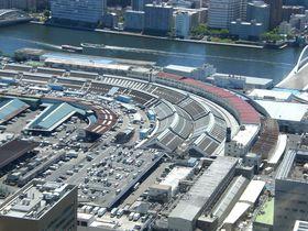 まだまだ楽しめる東京「築地場内市場」、その巡り方と美味しさを堪能あれ!|東京都|トラベルjp<たびねす>