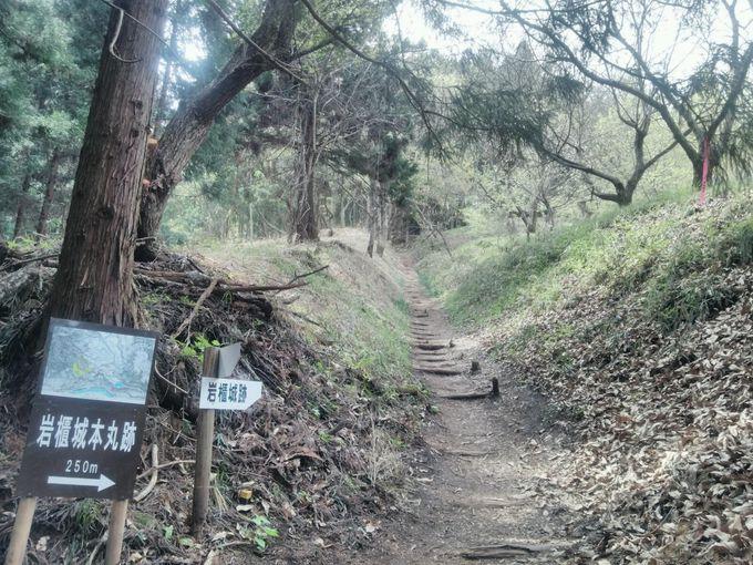本丸下に急階段、登れば本丸跡と城のシンボル「城跡木碑」!