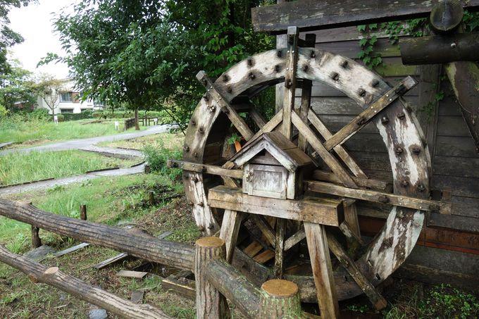 城跡を探す途中で、田園風景の中に水車小屋が現れる!