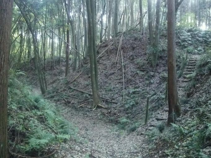 百名城にも続百名城にも選定されなかった茨城県の名城「小幡城」