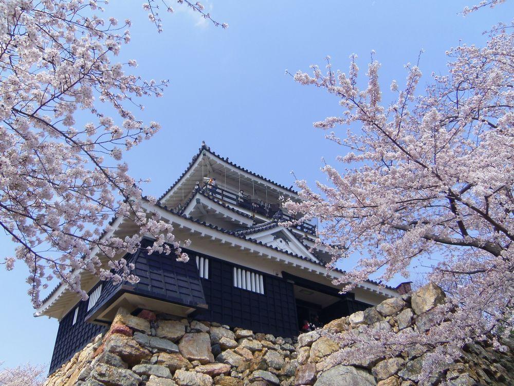 天下取りへと歩んだ成長の舞台「浜松城」