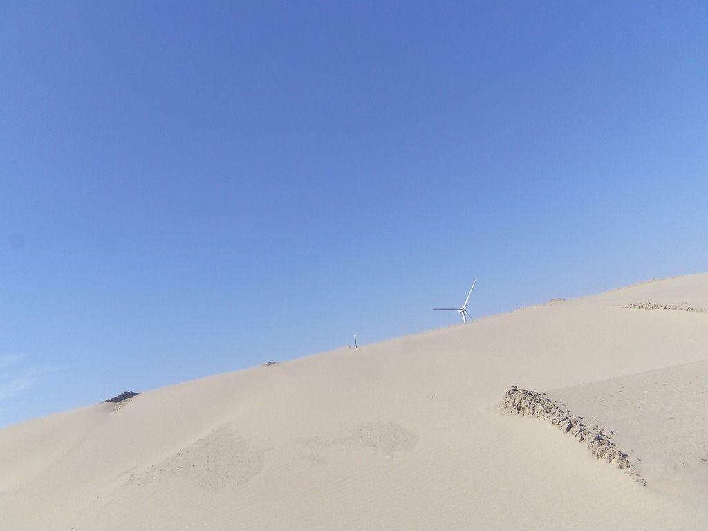 風と砂が生み出した浜岡砂丘に上ってみよう