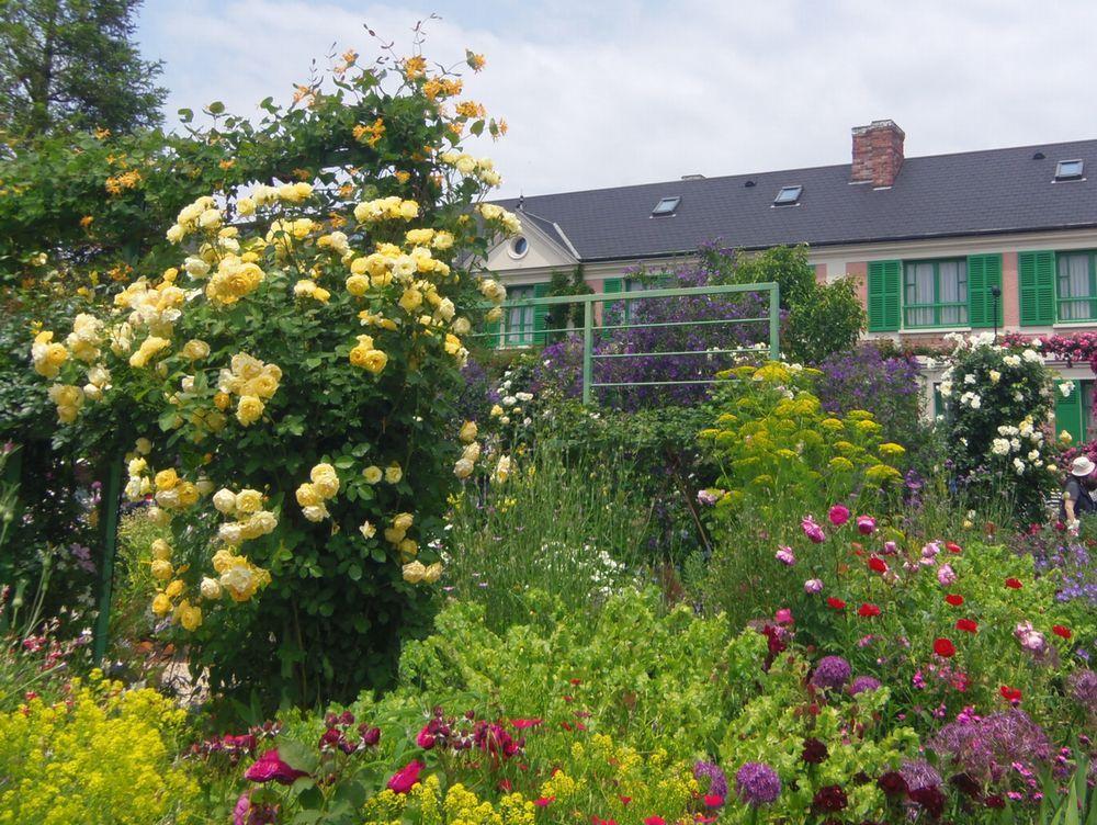 「花の庭」はバラ以外の色彩も鮮やか