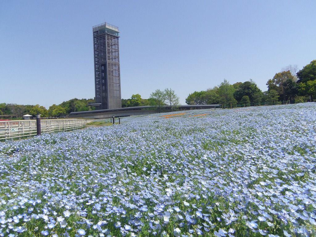 季節ごとの花や緑が楽しめる浜名湖屈指の人気スポット!