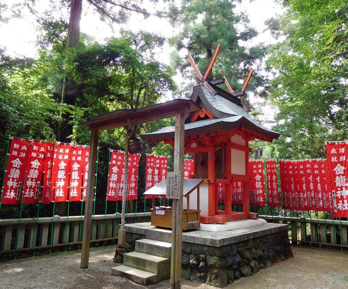 お百度参りが効果的「金龍神社」