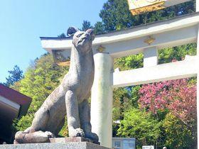 『もののけ姫』モロのモデルとは?埼玉・秩父に伝わる三峯神社のオイヌサマ伝説