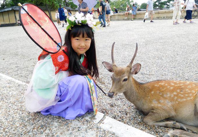 いにしえの姫・殿になって古都散策へ。猿沢池や興福寺で写真を撮ろう!