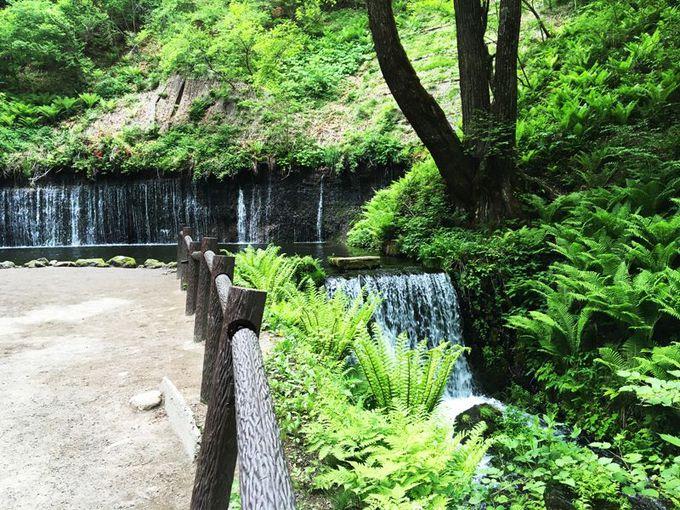車で草津温泉周辺の人気の観光スポットへ