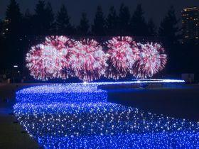 新感覚の花火大会も!「東京ミッドタウン」で夏を過ごそう|東京都|トラベルjp<たびねす>