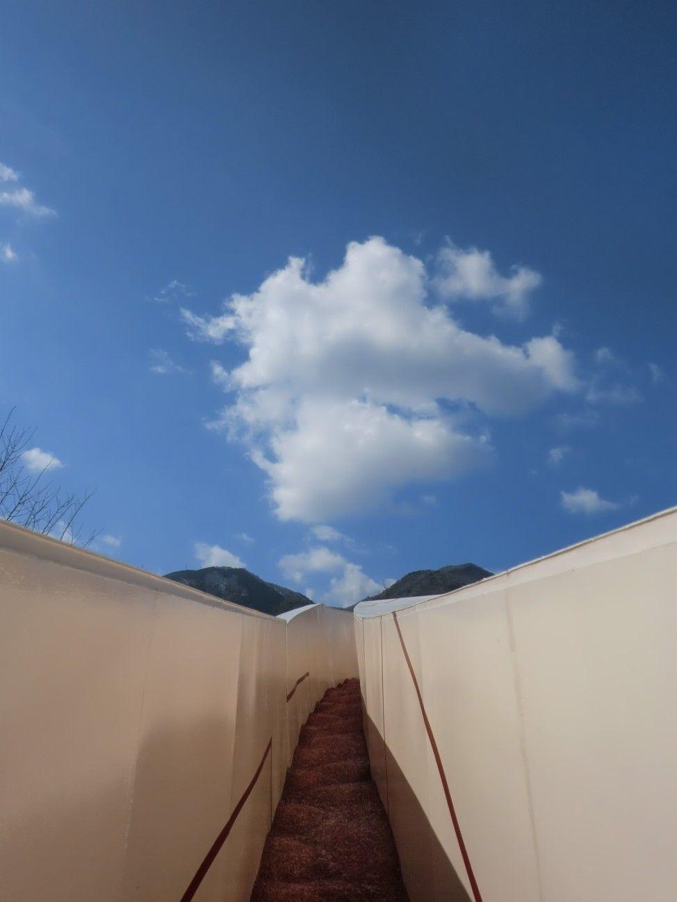 不思議な空間に迷い込む・非日常のアートの世界へ〜岐阜県養老郡 養老天命反転地〜