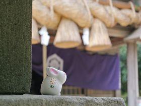 ウサギがあなたの縁結びをお手伝い!?鳥取「白兎神社」|鳥取県|トラベルjp<たびねす>