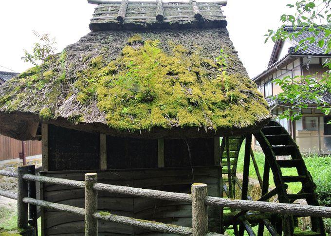 茅葺きの水車小屋がいい雰囲気