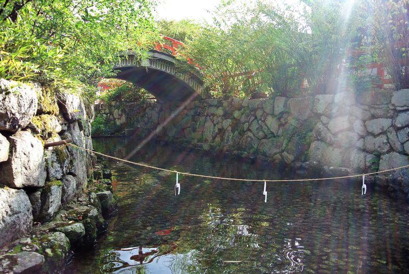 清流に囲まれた癒しスポット!京都「下鴨神社」の絶対外せない定番スポット