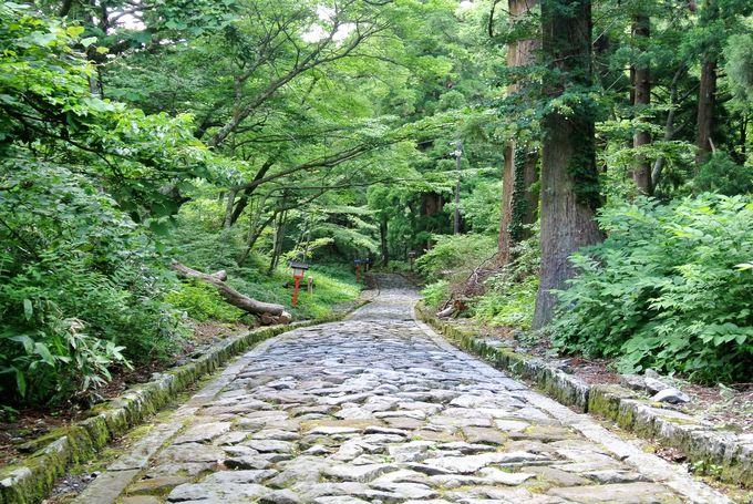 日本一長い自然石の参道