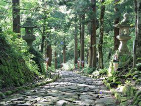 日本で1番長い自然石の参道が超神秘的!鳥取「大神山神社奥宮」|鳥取県|トラベルjp<たびねす>