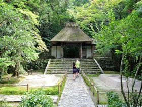 癒しの庭園を無料で満喫できる大人スポット 京都「法然院」|京都府|トラベルjp<たびねす>