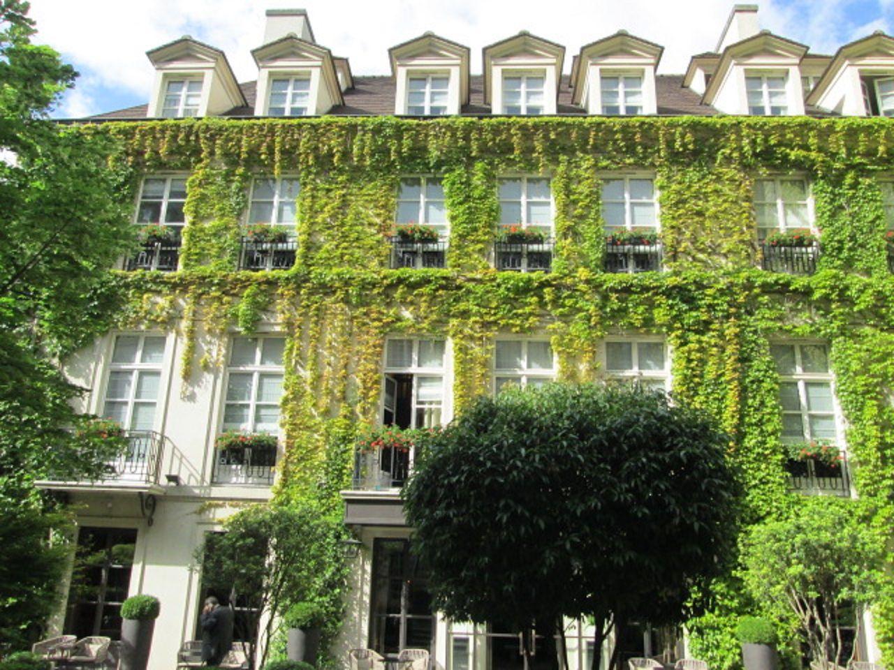 緑に覆われたかわいらしいホテル