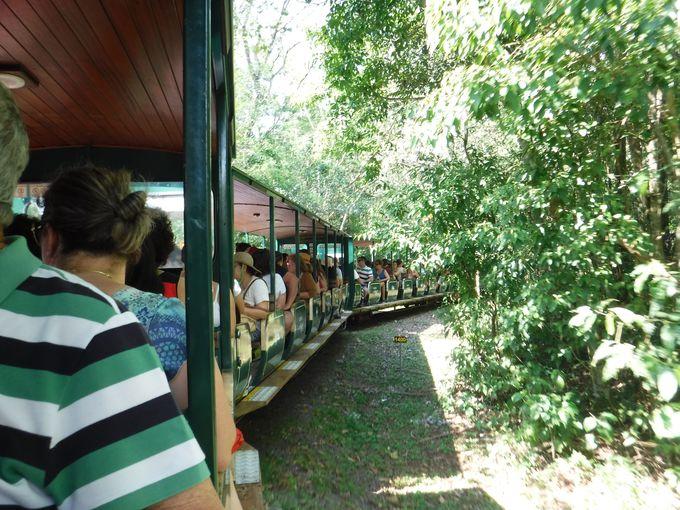5、イグアス国立公園内の移動には列車を利用しよう!